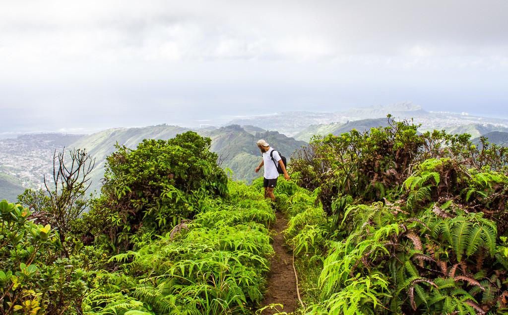 wiliwili-nui-ridge-hike-oahu-13
