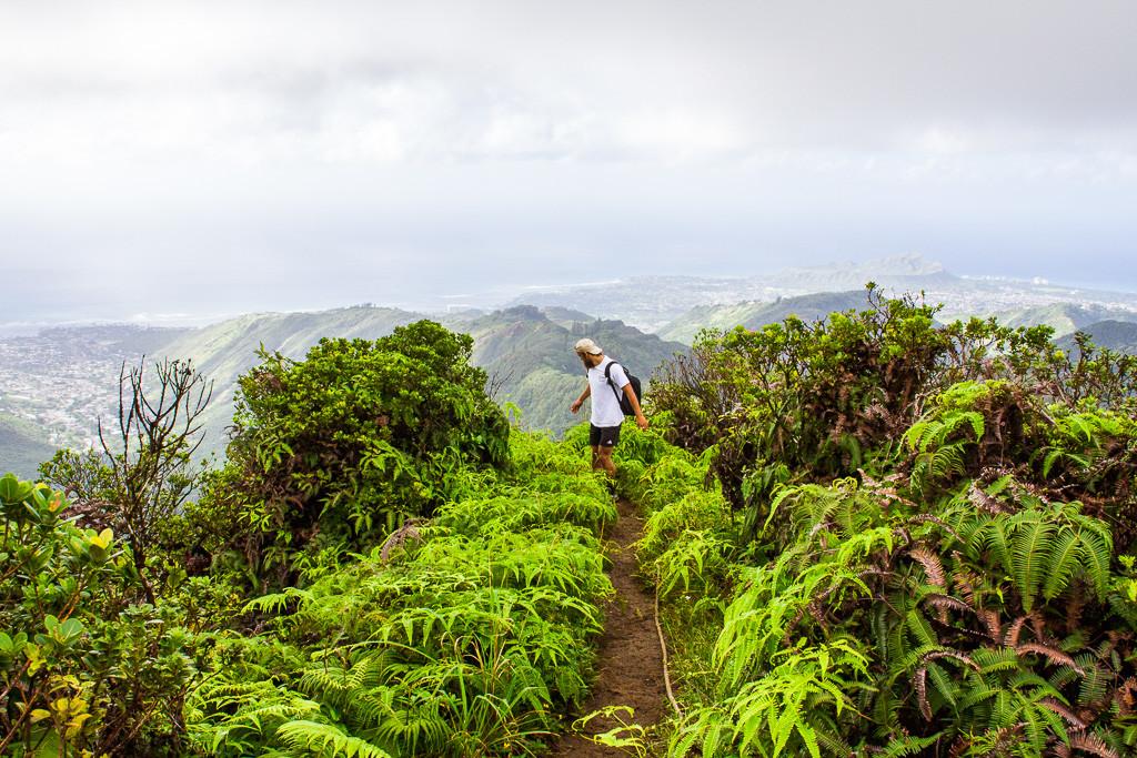 WiliWili Nui Ridge Hike Oahu-13