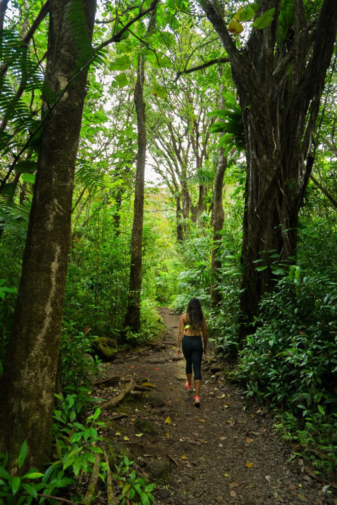 5 most popular hikes on oahu