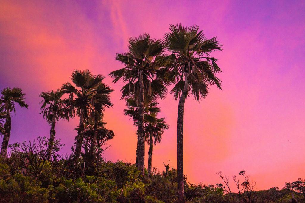 Sunset on the KST Trail, Oahu, Hawaii