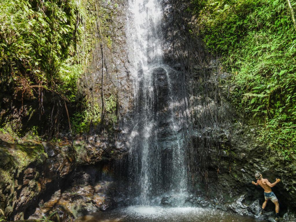 Ka'au Crater Trail Oahu, Hawaii-1050249