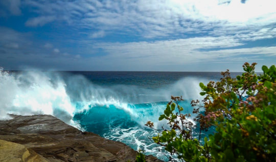 FEATURED IMAGEsurfing at china walls oahu