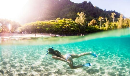 hawaii best instagram account