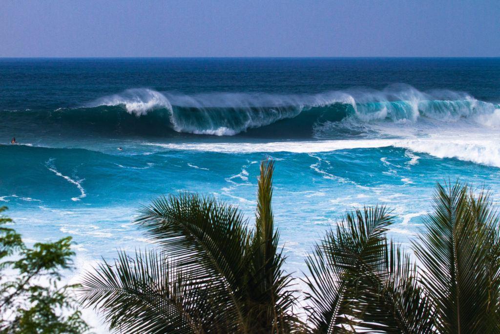 north shore oahu, north shore, pipeline, surf oahu