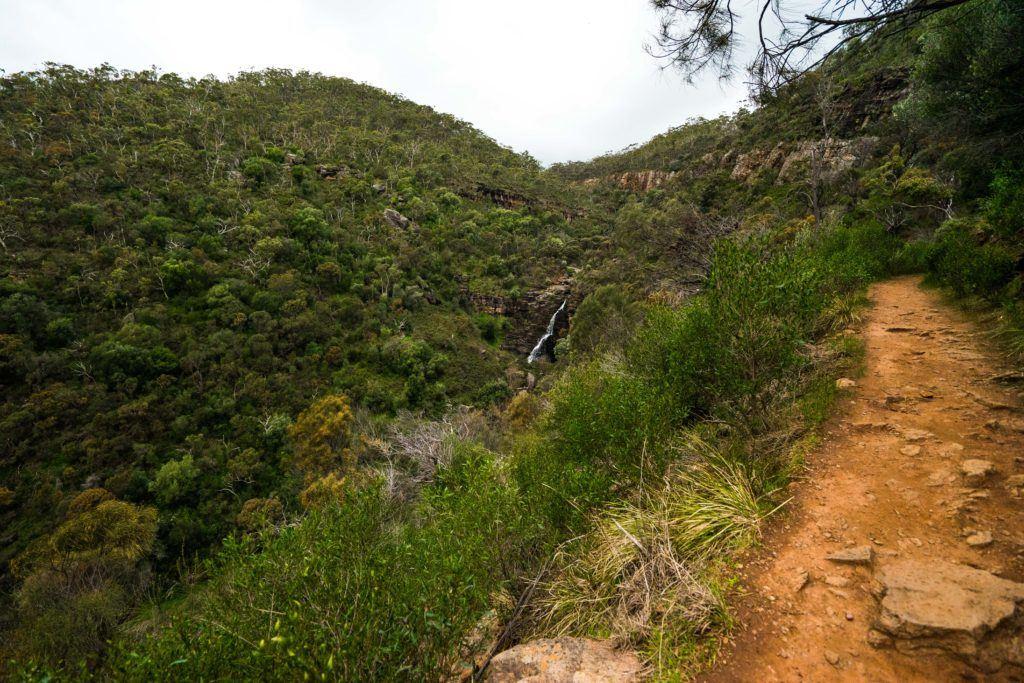 Morialta Falls Hike Adelaide-08667
