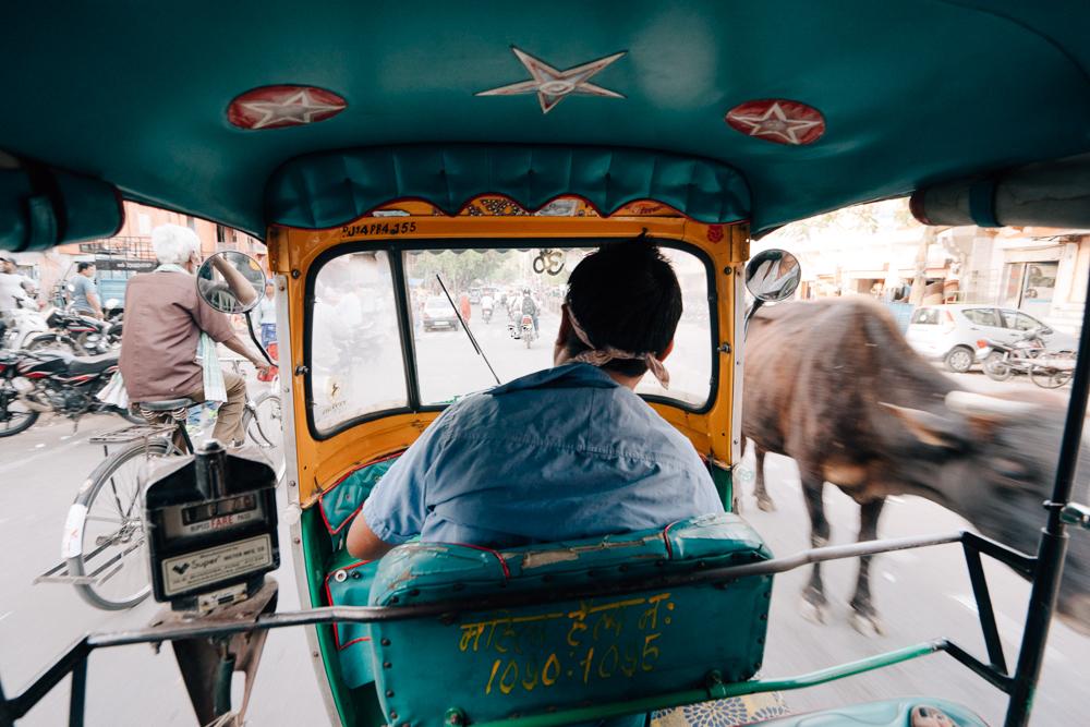 JAIPUR, places to visit in jaipur,jaipur tourism,jaipur tourist places,tourist places in jaipur,jaipur city,jaipur palace,jaipur points of interest,jaipur places to visit,jaipur sightseeing,jaipur pink city,jaipur rajasthan,pink city jaipur,jaipur india points of interest,places to see in jaipur,jaipur visiting places,jaipur famous places,best places to visit in jaipur,jaipur attractions,tourist places near jaipur,jaipur things to see