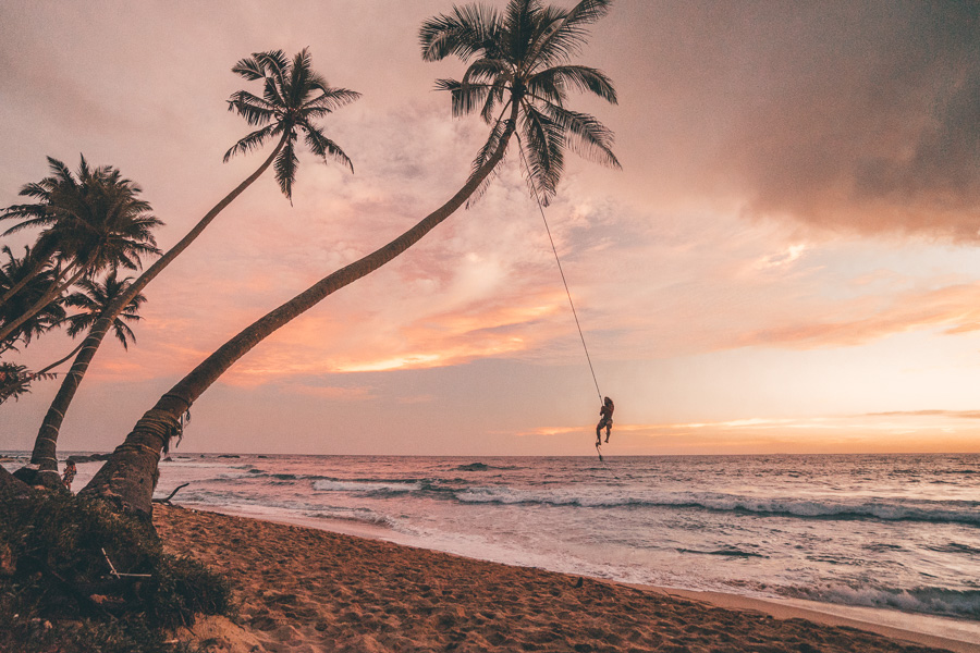 The palm tree rope swing at dalawella beach sri lanka journey era the palm tree rope swing at dalawella beach sri lanka voltagebd Image collections