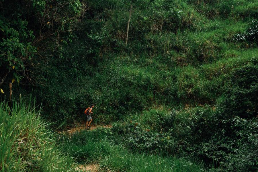 Cabello de Angel Waterfall Chirqui