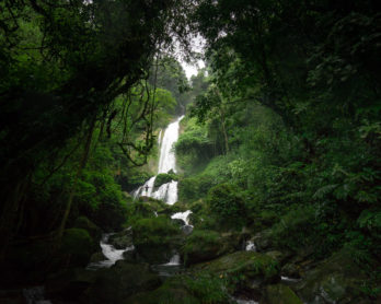 LAS GOLONDRINAS WATERFALL GUABAL SANTA FE
